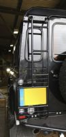 Defender Ladder with Integrated Lamp Guard